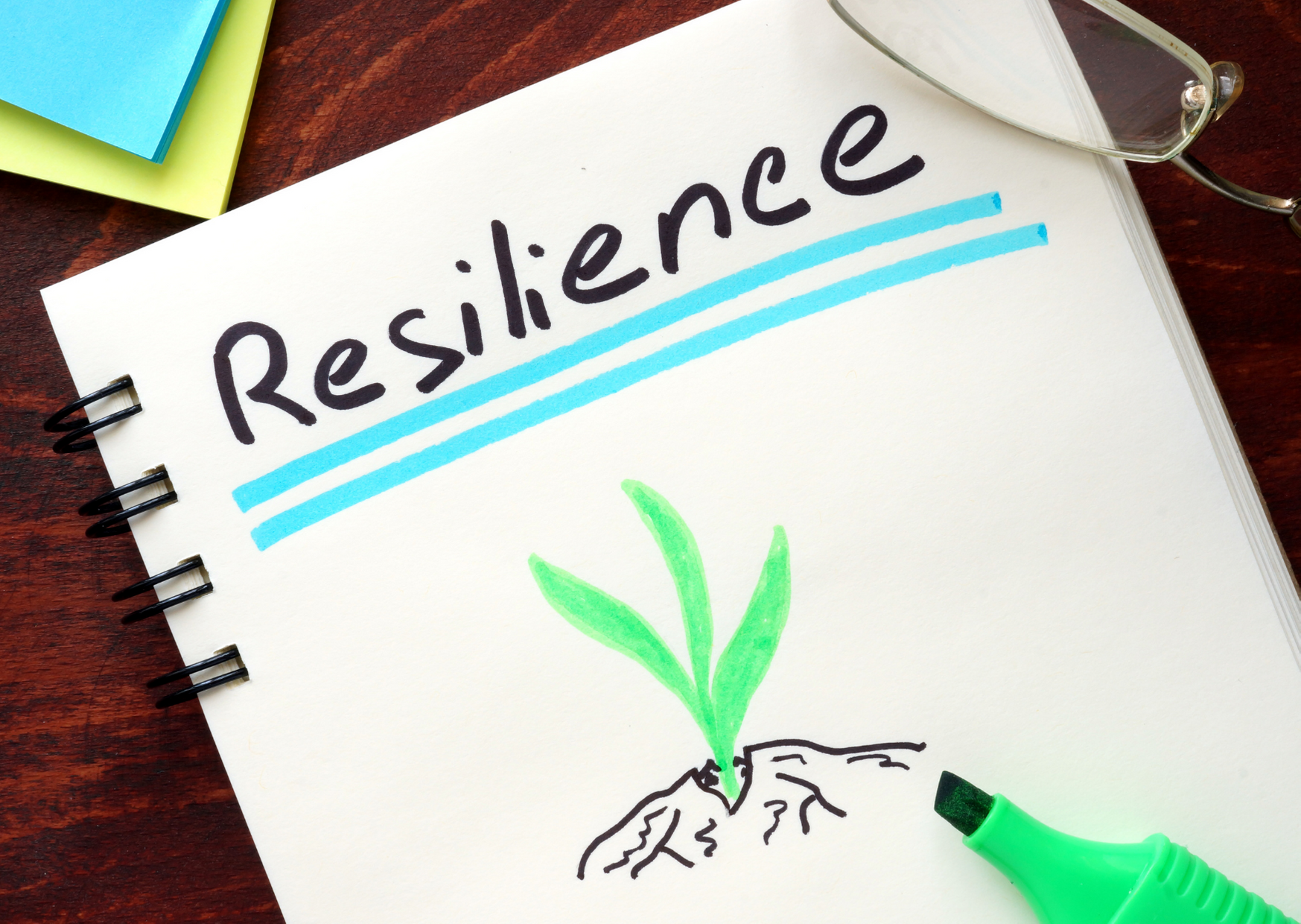Resilience Reboot Workshop (27 January 2021)